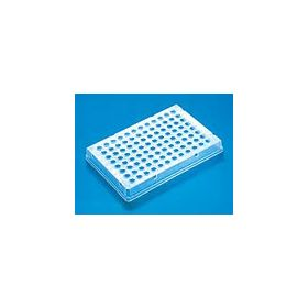 PCR-96 plate, skirted ,thermo-fast 25pcs=sp0037