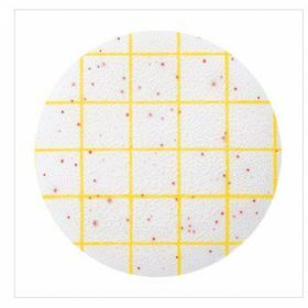 Petrifilm 3M aerobic count plate